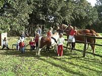 Zufriedene Kinder bei den Ponys
