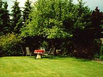 Lauschiges Plätzchen im Garten