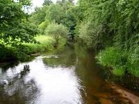 Die Örtze ist die wohl schönste Paddelroute in der Lüneburger Heide.